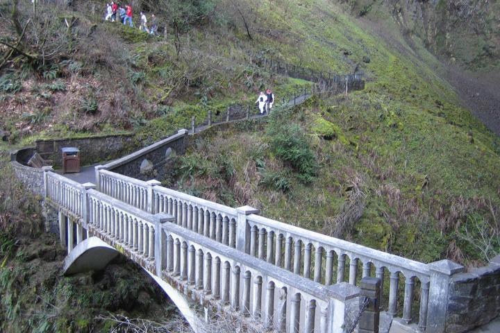 Pet Friendly Multnomah Falls