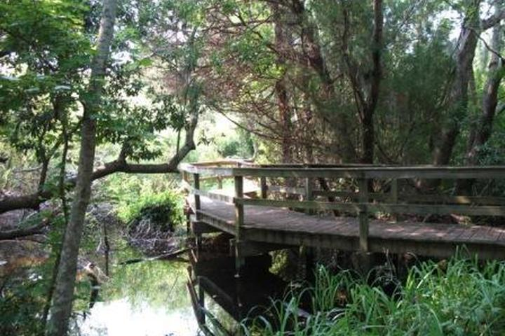 Pet Friendly The Sea Pines Forest Preserve