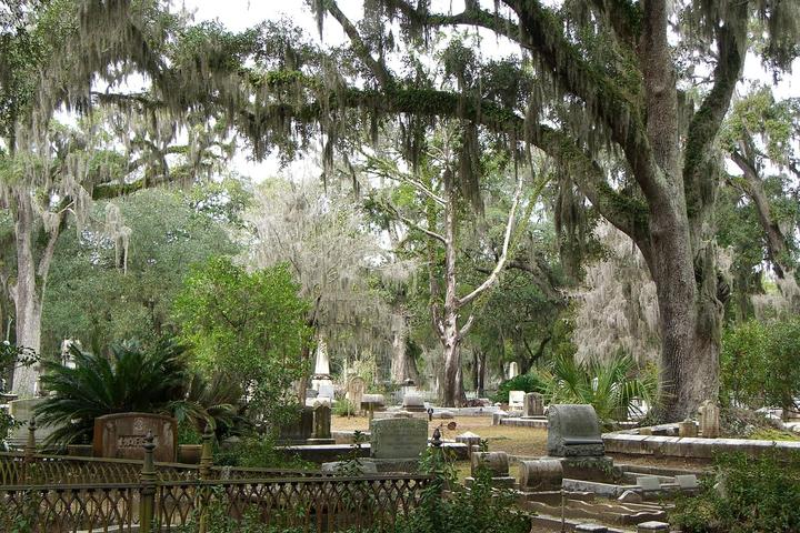 Pet Friendly Bonaventure Cemetery