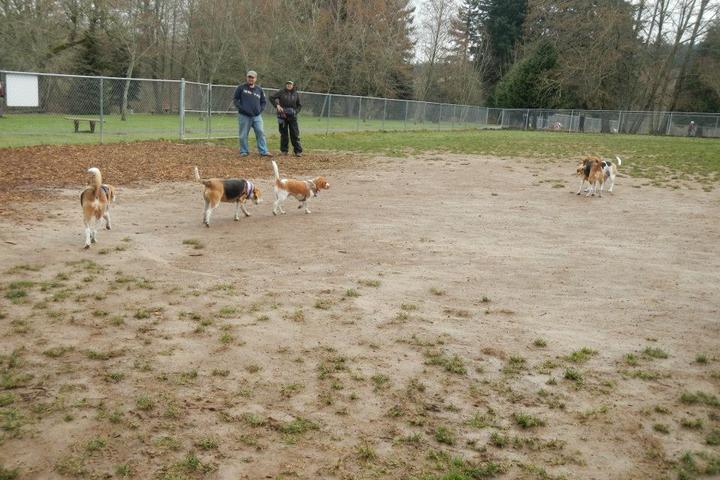 Pet Friendly Happy Tails Dog Park at Kohl Memorial Park