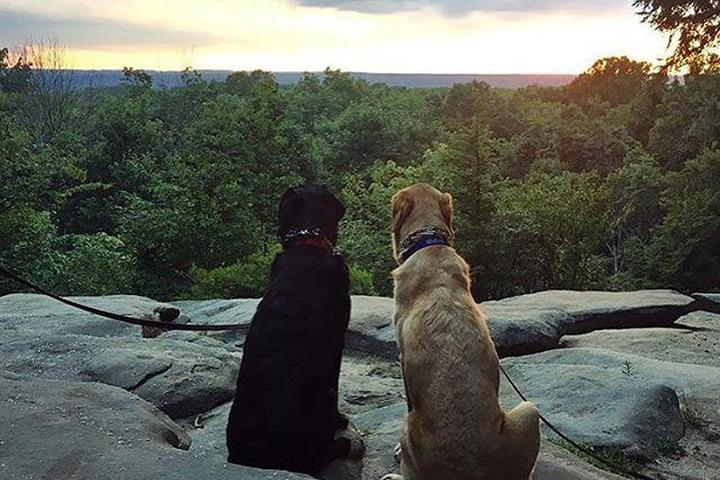 Pet Friendly Cuyahoga Valley National Park