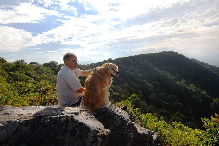 Pet Friendly Pilot Mountain State Park