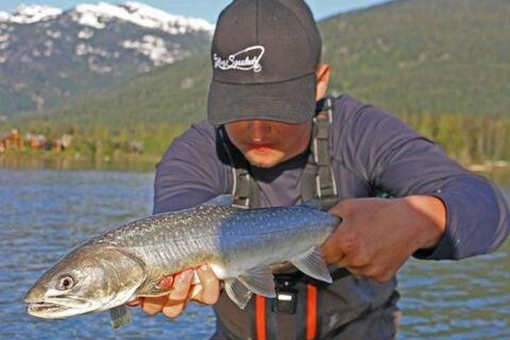 Pet Friendly Trout Fishing with a Local Guide