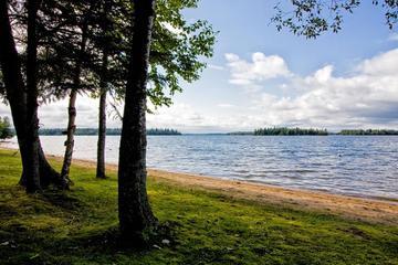 Pet Friendly Long Point Provincial Park