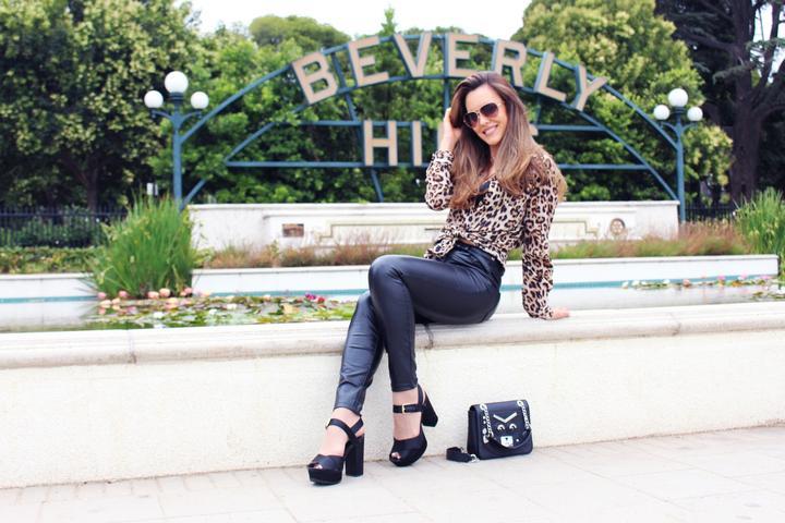 Pet Friendly Beverly Hills Photo Tour