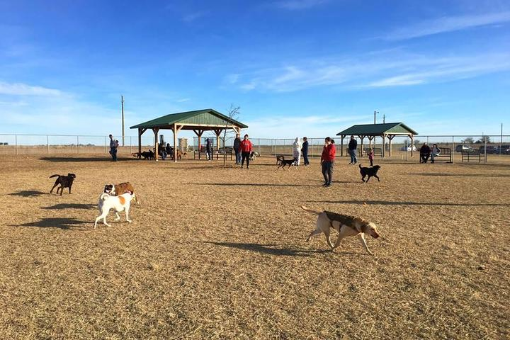 Pet Friendly Bremyer Dog Park