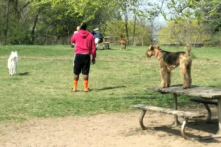 Pet Friendly Battle Creek Regional Dog Park