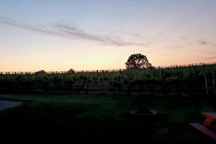 Pet Friendly Kreutz Creek Vineyards and Winery