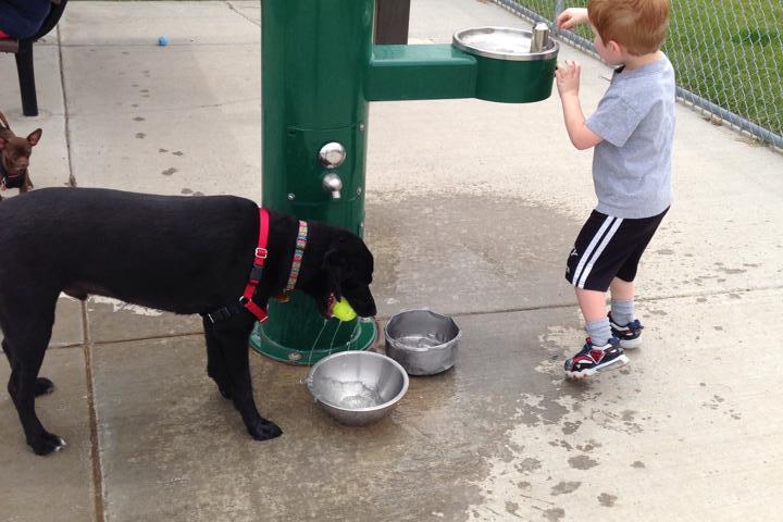 Pet Friendly West Jordan Dog Park