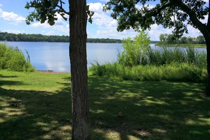 Pet Friendly Bald Eagle Otter Lake Regional Dog Park