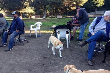Pet Friendly Pinole Small Dog Park