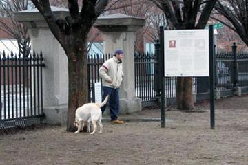 Pet Friendly Pacific Street Dog Park