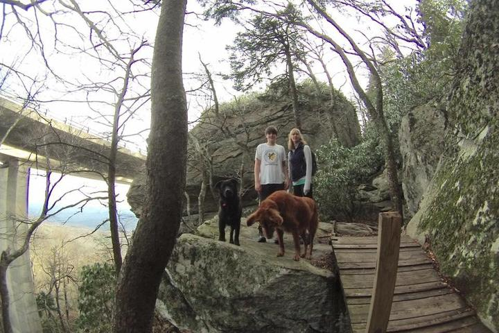 Pet Friendly Tanawha Trail