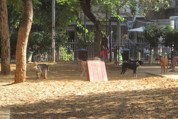 Pet Friendly Gan Hayarkon Dog Park
