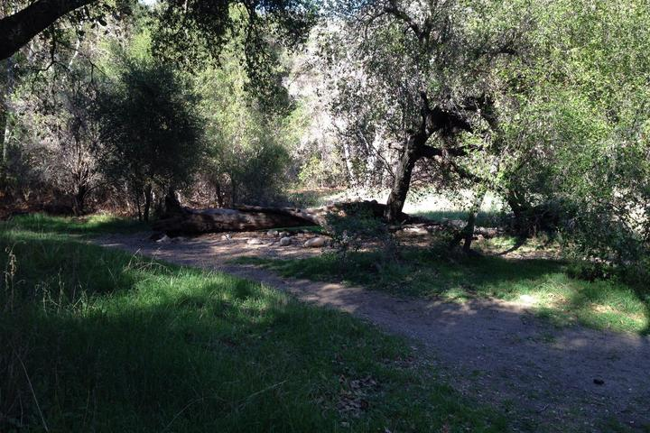 Pet Friendly Fishermans Camp Trail