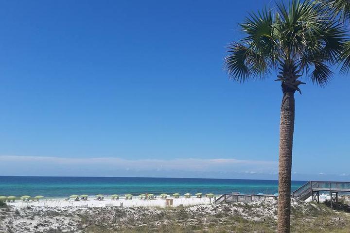 Pet Friendly Miramar Beach