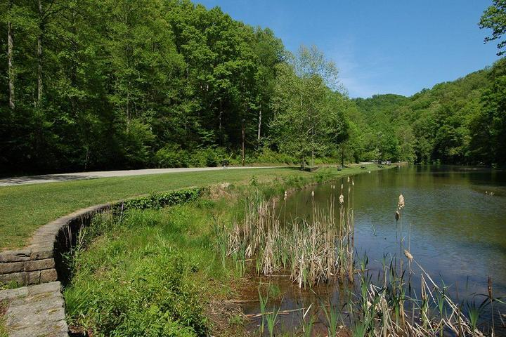 Pet Friendly Kanawha State Forest