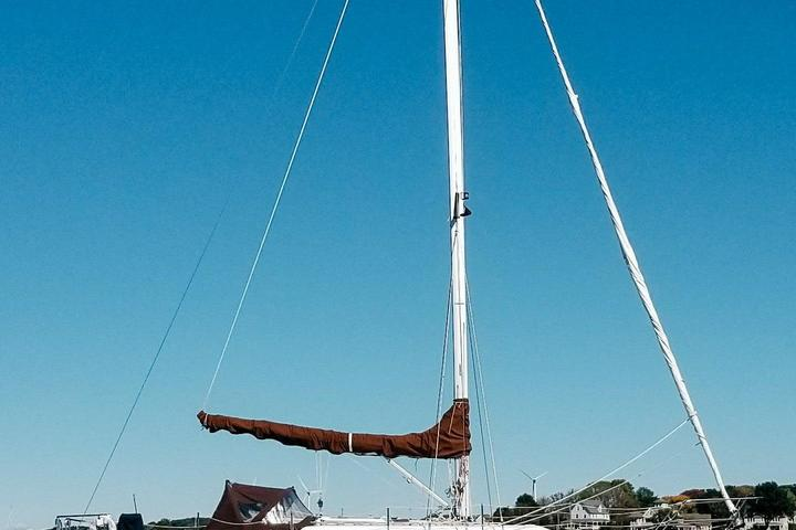 Pet Friendly Sailing Adventure For Up to 6 People