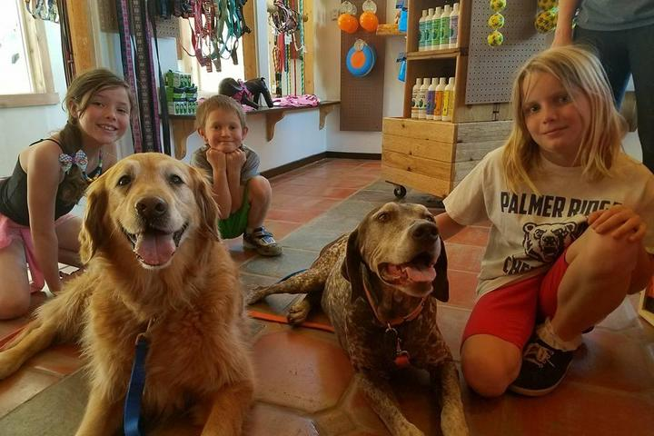 Pet Friendly Ouray Dog Company