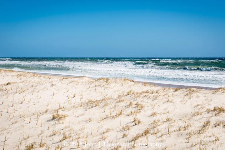 Pet Friendly Nauset Beach
