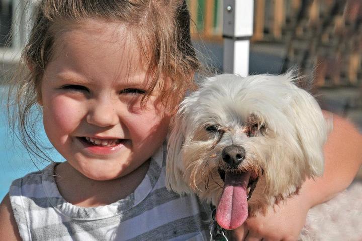 Pet Friendly Shreveport Dog Park
