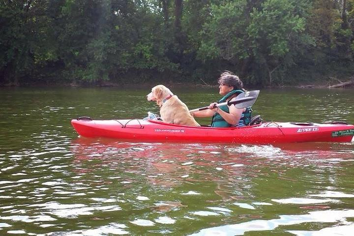 Pet Friendly River & Trail Outfitters