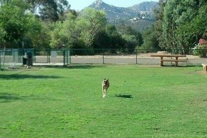Pet Friendly Country Estates Dog Park
