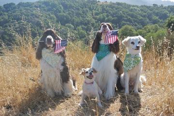 Pet Friendly Pulgas Ridge Open Space Preserve