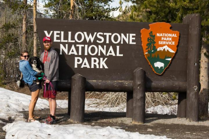 Pet Friendly Yellowstone National Park's West Entrance