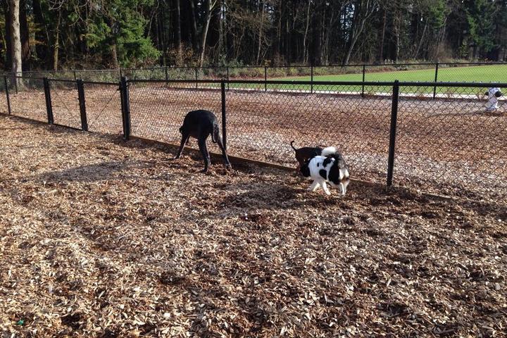 Pet Friendly Tualatin Community Park Dog Run