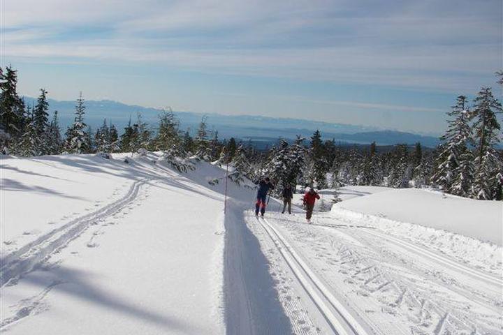 Pet Friendly Dakota Ridge Winter Recreation Area