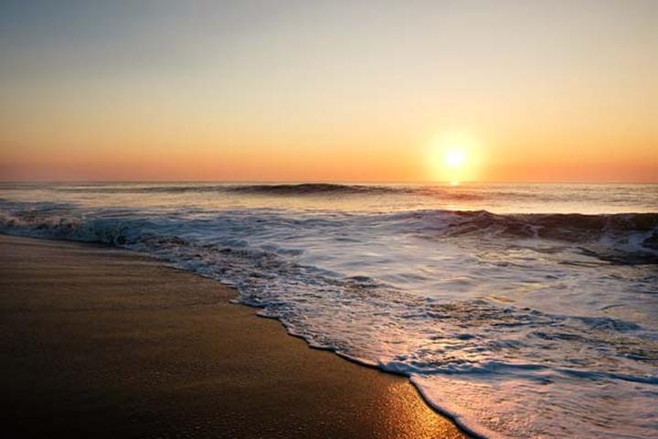 Pet Friendly Ocean City Beach