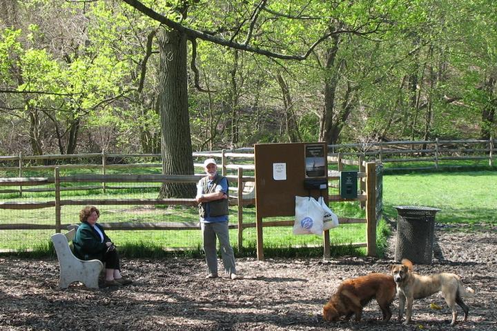 Pet Friendly Curtis Park Dog Park