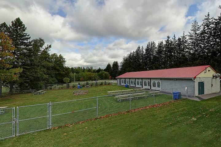 Pet Friendly Barrie Community Sports Complex