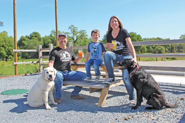 Pet Friendly Dueling Dogs Brewing Co.