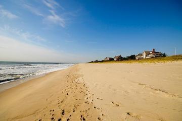 Pet Friendly East Hampton Main Beach