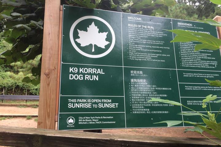 Pet Friendly Forest Park Dog Run