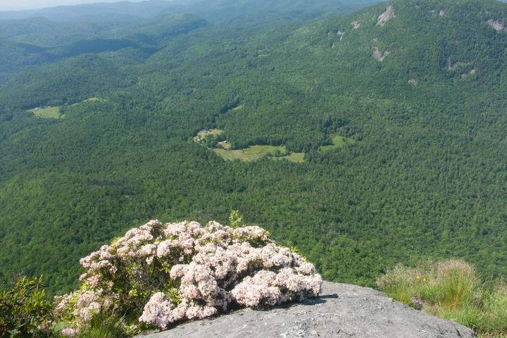 Pet Friendly Whiteside Mountain National Recreation Trail