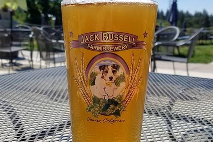 Pet Friendly Jack Russell Farm Brewery