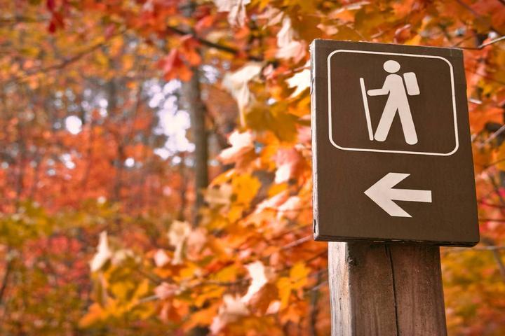 Pet Friendly Arrowhead Walking Trail