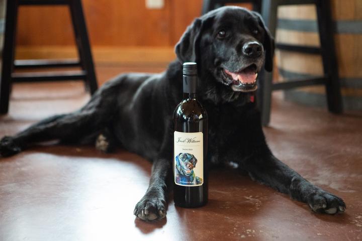 Pet Friendly Jacob Williams Winery