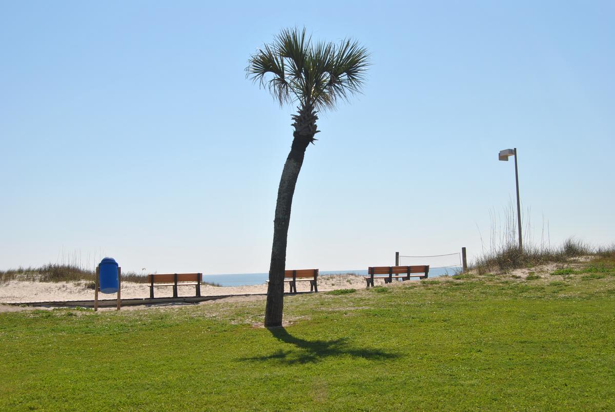 fernandina beach chat Fernandina beach main beach park is a popular dog beach in fernandina beach,  chat now cancel reservation.