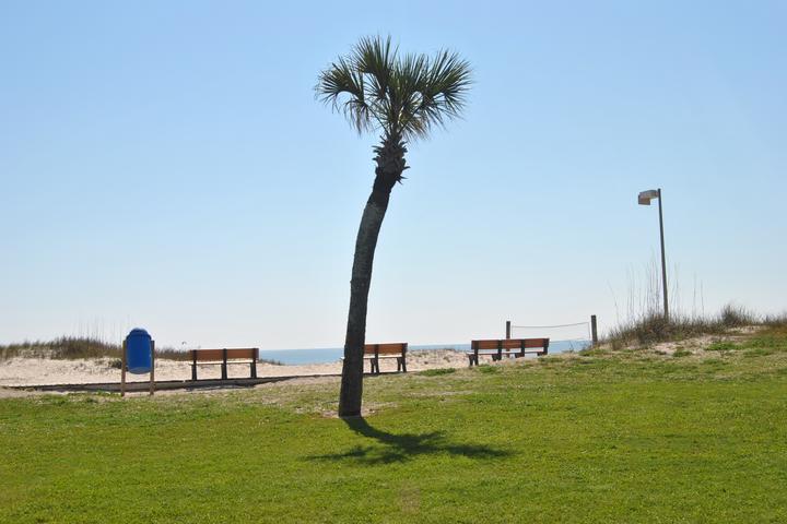Pet Friendly Fernandina Beach Main Beach Park