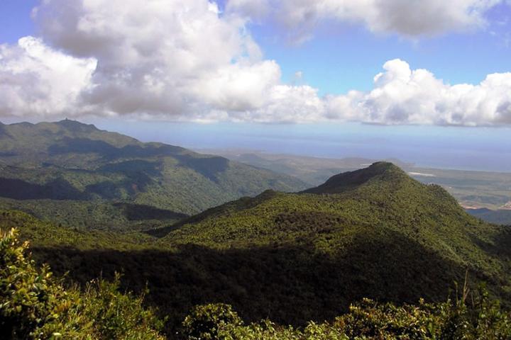 Pet Friendly El Yunque National Forest