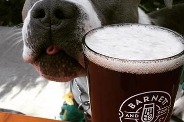 Pet Friendly Barnett and Son Brewing Company
