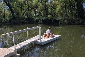 Pet Friendly Clear Lake State Park