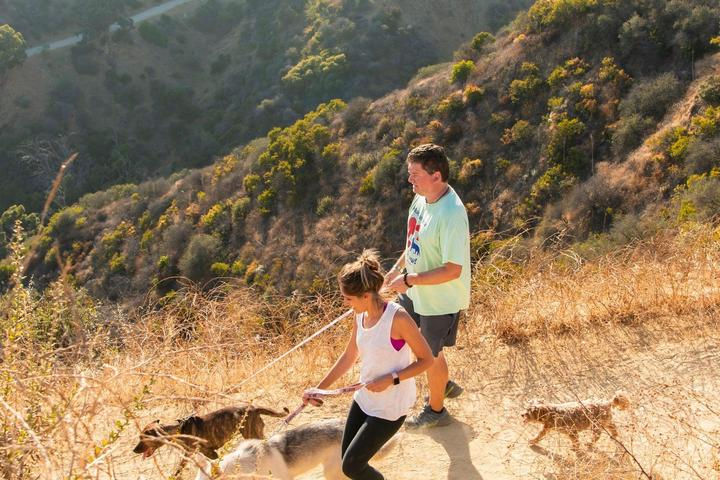 Pet Friendly Hike Runyon Canyon with a Rescue Dog