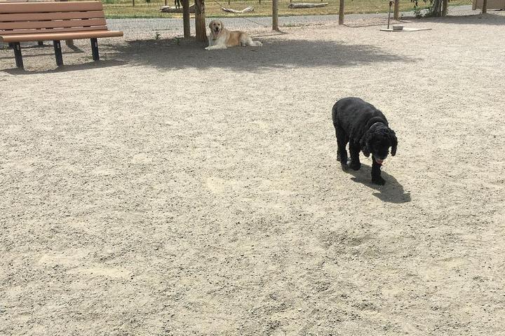 Pet Friendly Trail Winds Dog Park