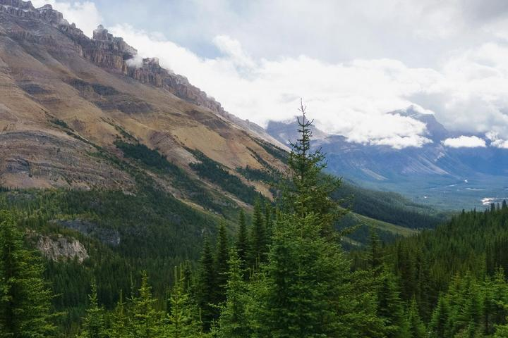 Pet Friendly Hike Icefields Parkway