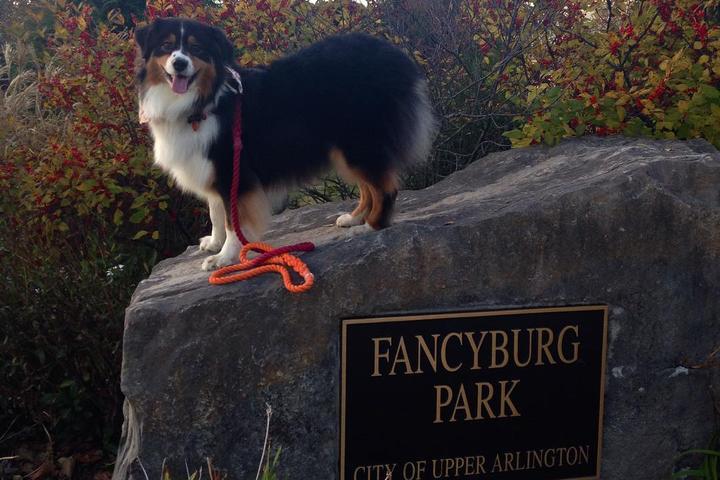 Pet Friendly Fancyburg Park